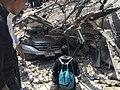 Terremoto de Puebla de 2017 - Ciudad de México - 16.jpg