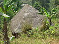 Thatched roof of a house in Belo.JPG
