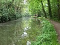 The Basingstoke Canal, near Dogmersfield - geograph.org.uk - 170329.jpg