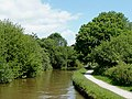 The Coventry Canal towards Alvecote, Warwickshire - geograph.org.uk - 1155037.jpg