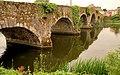 The Graiguenamanagh Bridge - geograph.org.uk - 1672354.jpg