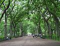 The Mall-Central Park.jpg