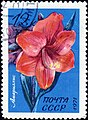 The Soviet Union 1971 CPA 4083 stamp (Amaryllis) cancelled.jpg