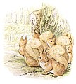 The Tail of Squirrel Nutkin - page 52.jpg
