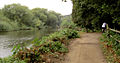 The Trans Pennine Trail along the River Don - geograph.org.uk - 563054.jpg
