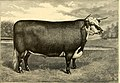 The breeds of live stock, and the principles of heredity (1887) (14758325296).jpg