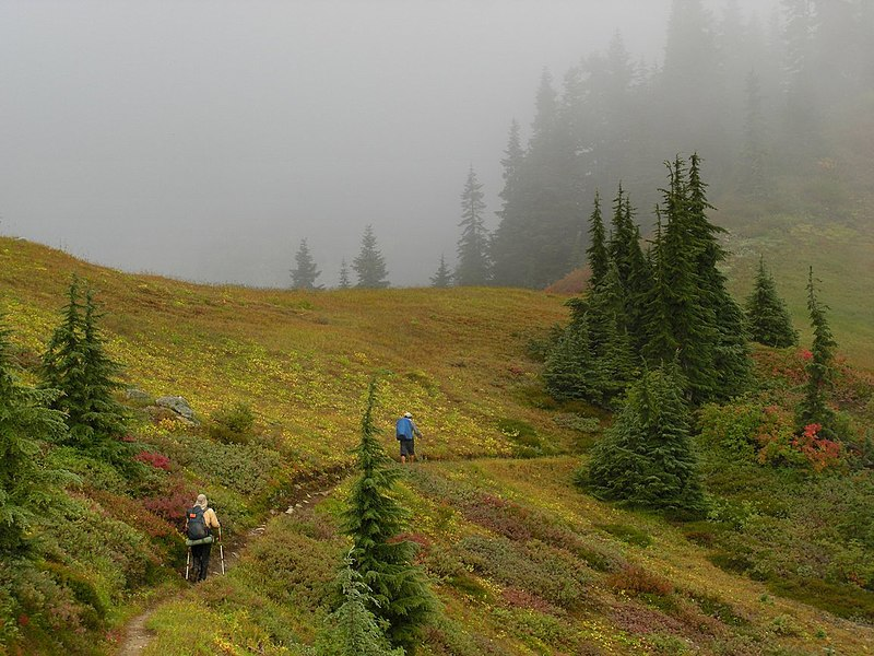 File:Thru-Hikers Headed into Mist (5038380872).jpg