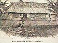 Tonga-30.jpg