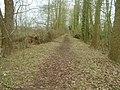 Trackbed of the former Waveney valley railway - geograph.org.uk - 1014238.jpg