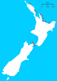 Tuatara (Sphenodon) Distribution.png