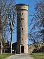 Turm komplett am Theresienstein 20200406 06.jpg
