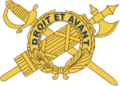 USA - Inspector General Branch Insignia.png