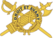 USA - Inspector General Branch Insignia