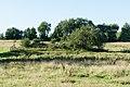Ulstrup Hede (Norddjurs Kommune).Langhøj.43378.1.ajb.jpg