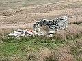 Upland ruin - geograph.org.uk - 412852.jpg