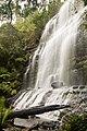Upper Tier Of Russell Falls 4787.jpg