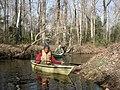 Upper part of Cedar Creek (8417838934).jpg