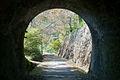 Usui-No1-Tunnel-04.jpg