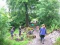 Vale View, Beechgrove day 3.JPG
