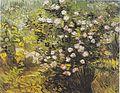 Van Gogh - Blühender Rosenbusch.jpeg