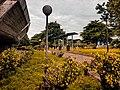 Vegetation in NAT, Lagos.jpg