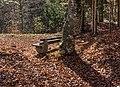 Velden am Wörther See Köstenberg Waldbank an der Burgruine Hohenwart 08112018 5319.jpg