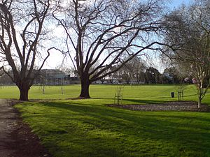 Victoria Park, Auckland - Victoria Park, seen from the southeast.
