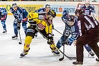 Vienna Capitals vs Fehervar AV19 -200-6.jpg