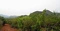 View at Kambalakonda Sanctuary1.jpg