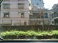 View of Ruifang from train 01.jpg