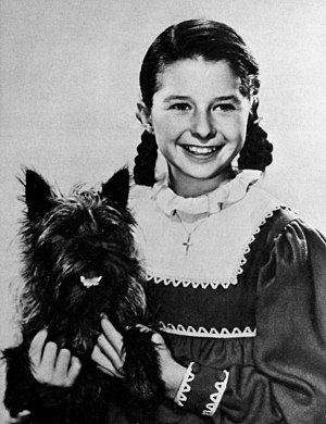 Virginia Weidler - with Toto, in a studio promotional photograph to celebrate Christmas 1939