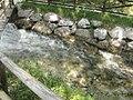 Visit a Tarvisio 08.jpg
