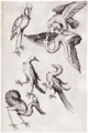 Vogels Sechs (Meister E. S.).png
