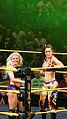 WWE NXT 2015-03-27 22-57-30 ILCE-6000 3470 DxO (16746696683).jpg