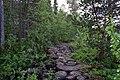Walking trail, Inari, Finland (1) (36288144450).jpg