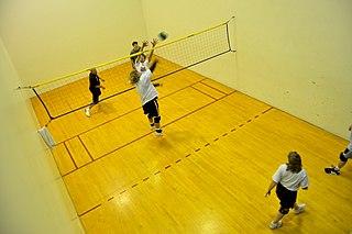 Wallyball Ball sport