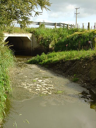 Agricultural pollution - Water pollution due to dairy farming in the Wairarapa area of New Zealand (photographed in 2003)