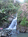 Waterfall in el Yunque, Puerto Rico.jpg