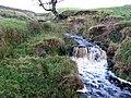 Waterfall on Philip Burn - geograph.org.uk - 629490.jpg