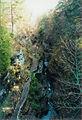 Watkins Glen State Park 1.jpg