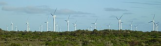 Wattle Point Wind Farm - The windfarm from the edge of Edithburgh.