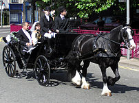 A wedding carriage in Bristol, England