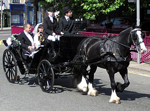 Wedding customs by country - A wedding carriage in Bristol, England