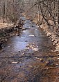 West Branch Little Muncy Creek looking downstream.JPG