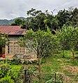 West Sumatran brick house and home garden with orange.jpg