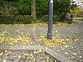 WestlicherBordsteinImGehwegStr17Juni-nachSüd.JPG