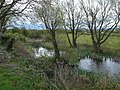 Wetland area at Rhuddlan Nature Reserve (geograph 2917499).jpg