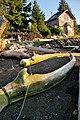 Whale bones on the beach at Rose Harbour, Haida Gwaii.jpg