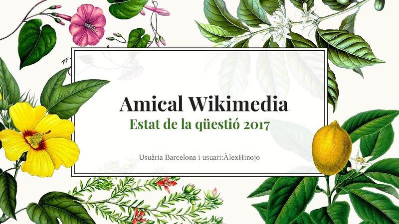 File:Wikimedia 2017 estat de la qüestió.pdf