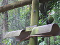 Wild Adventures Bird House 051114 08b.JPG